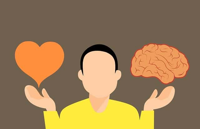 Instinct vs Intuition  When to Trust Your Gut Feeling | Heart of