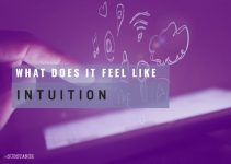 How Does Intuition Feel?