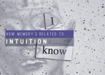 How Is Memory Related With Intuition In Decision Making?
